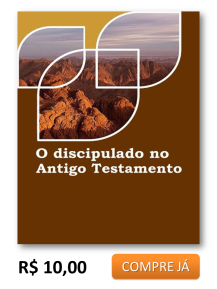 o discipulado no at