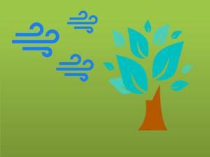 árvore folha